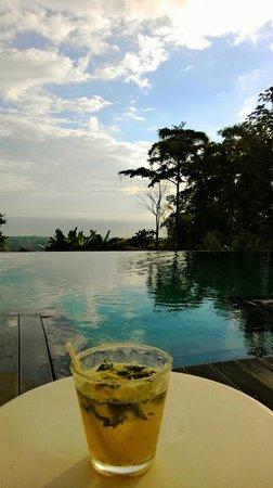 Oxygen Jungle Villas: view from poolside