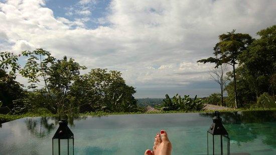 Oxygen Jungle Villas: poolside