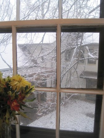 Arbor House, An Environmental Inn: View of the snow from our room with fresh flowers from the Inn.