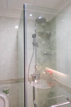Tai-Ichi Hotel: Shower