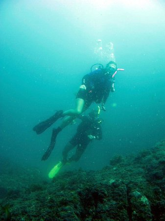 Gary 39 s dive shop san carlos mexico top tips before you - Dive shop mexico ...