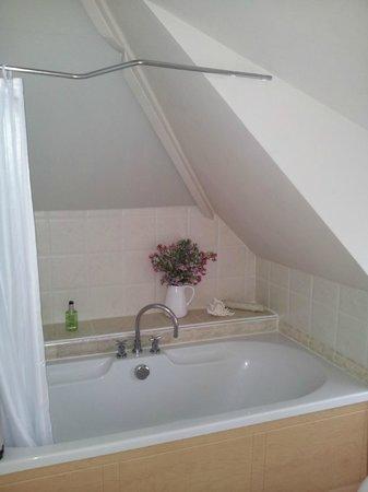 Halwell Lodge: Bathroom