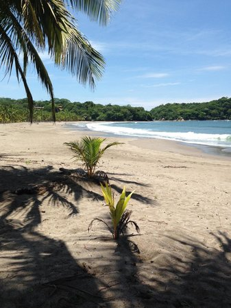 Playa Carrillo, Kostaryka: Carrillo Beach