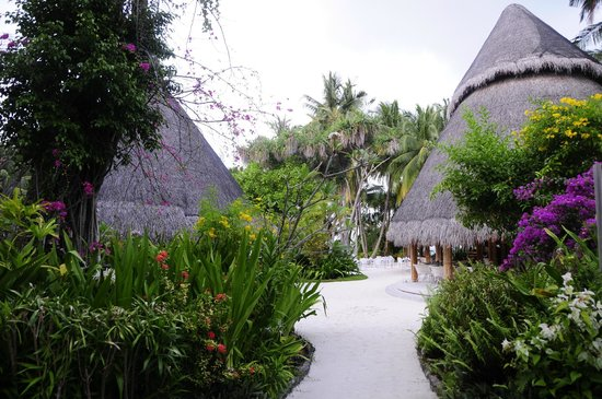 Kuramathi Island Resort: One of the restaurants