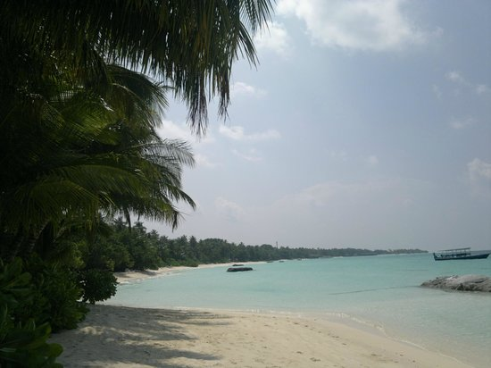 Kuramathi Island Resort: Beach