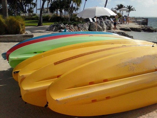 Epic Adventure Tours - Private Day Tours: Kayaking Woohoo!