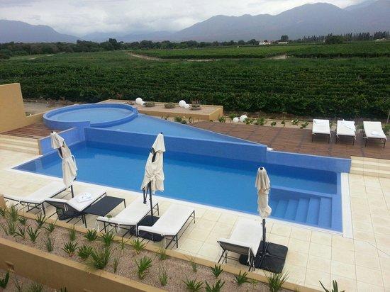 Vinas de Cafayate Wine Resort: Pool overlooking vineyards