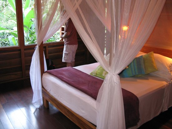 Geckoes Lodge: Bedroom