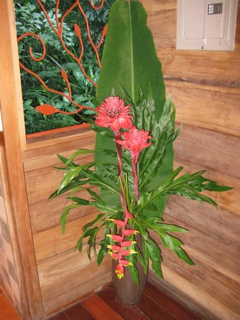 Geckoes Lodge: Fresh flowers