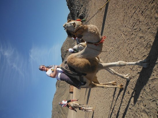 Eastern (Arabian) Desert : My first Camel ride with a smile