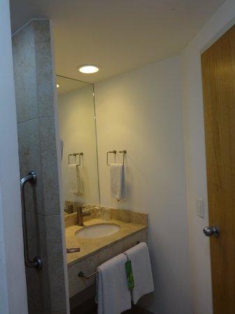 One Guadalajara Centro Històrico: Bathroom