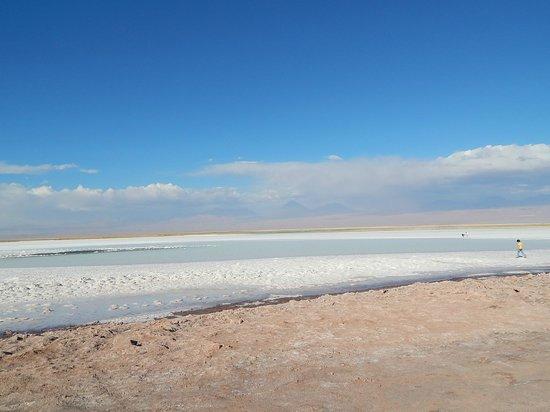 Laguna Tebinquinche: Lagoa tebinquinche