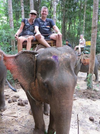 Nosey Parker's Elephant Camp - Private Day Tours : Photo Op