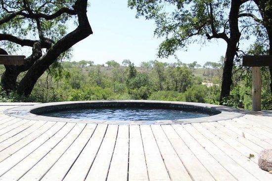 Londolozi Private Game Reserve: Private (cool) pool