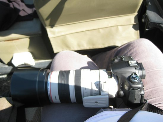 Londolozi Private Game Reserve: the lens! canon is 100-400