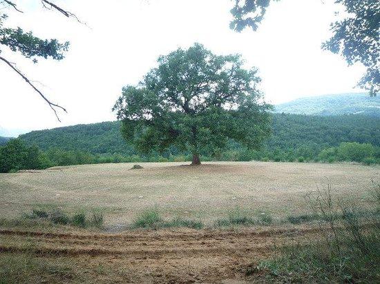 La Ferme Lavaldieu : il campeggio