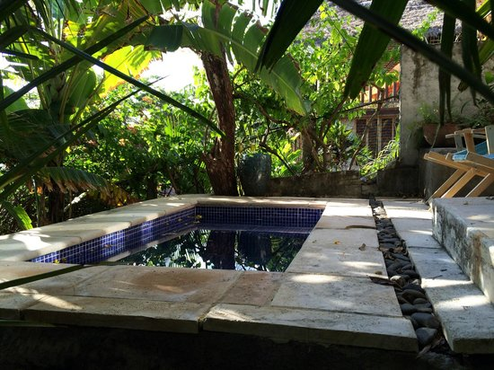 Hotel Selva Azul: 9