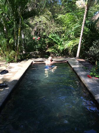Hotel Selva Azul: 18
