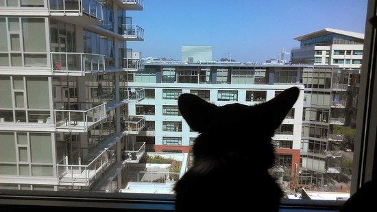 Hotel Indigo San Diego Gaslamp Quarter: City view