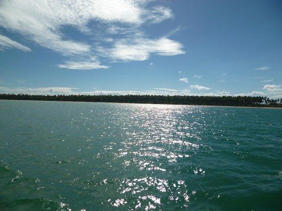 Garapua Beach: Paisaje Garapua