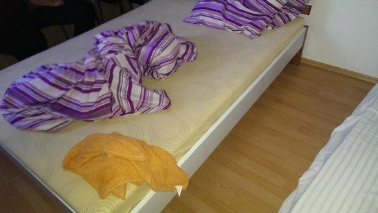 Frankfurt Central Hostel : unconfortable bed