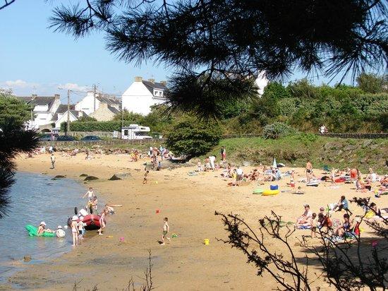 Ile de St. Cado, France: st cado, la petite plage devant le camping