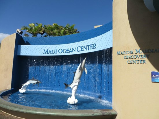 Maui Ocean Center is well set up and maintained.