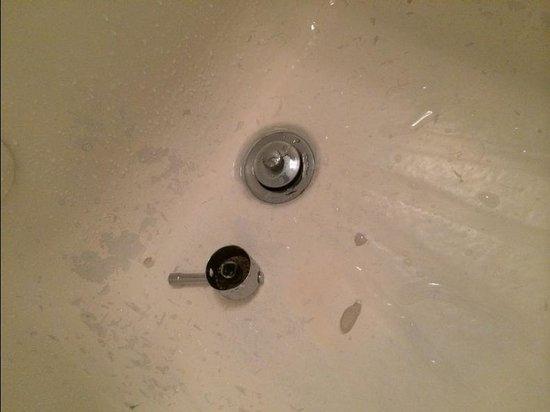Penguin Hotel: bathtub