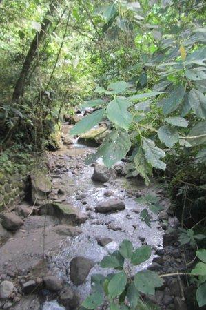 El Chorro Macho : Hiking