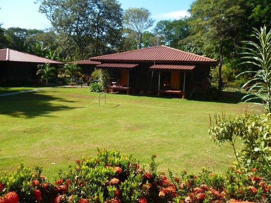 Hotel Canto de Ballenas: En este bungalow hay 4 habitaciones