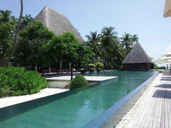 Anantara Kihavah Maldives Villas: Piscina principal