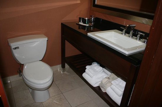 The Bostonian Boston: Toilet and sink area