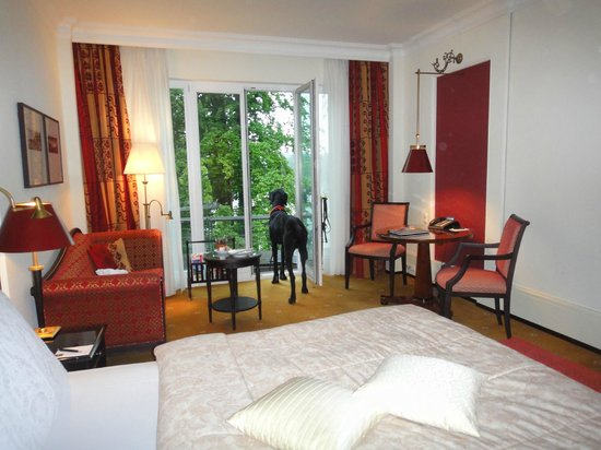 Schloss Fuschl Resort & Spa, Fuschlsee-Salzburg: Любимое занятие Грома - смотреть из окна на озеро