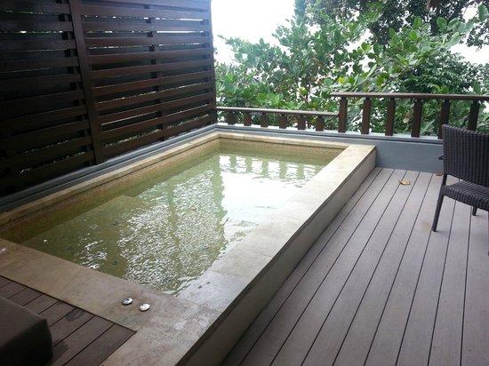 Banyan Tree Bintan: Plunge pool