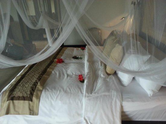 Banyan Tree Bintan : Room