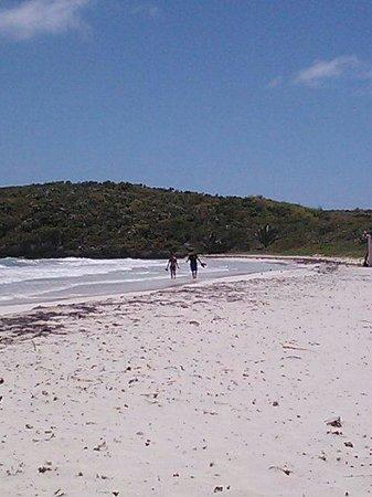 Epic Adventure Tours - Private Day Tours: FABULOUS hidden beach