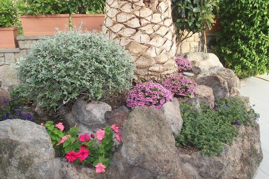 Grifo Hotel Charme & SPA : giardino hotel