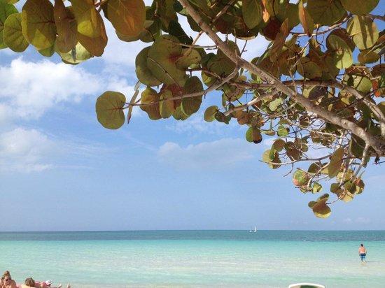 Hotel Playa Coco: Plage splendide!