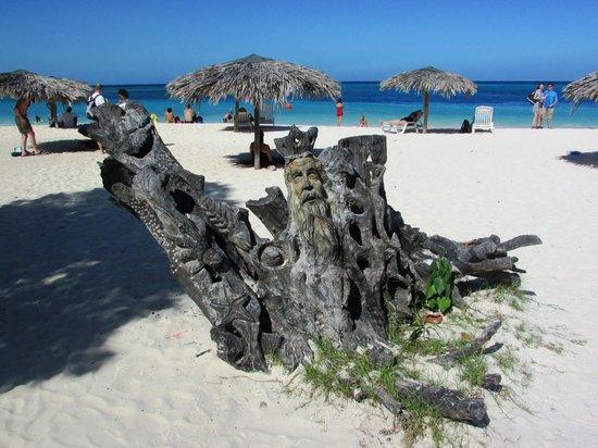 Guardalavaca Beach: driftwood sculpture
