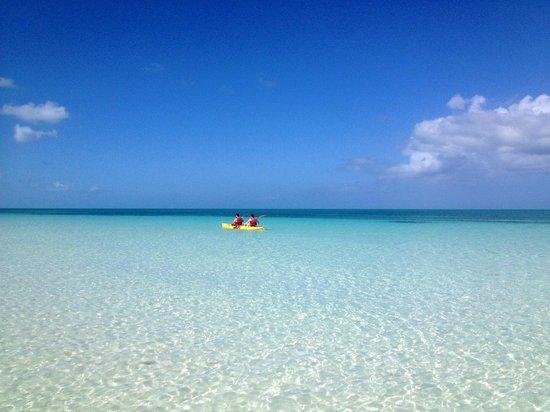 Hotel Playa Coco: Magnifique plage, la plus belle que nous avons vu à ce jour à Cuba!