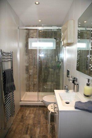 Keslake Towers B&B : Garden room ensuite private shower room