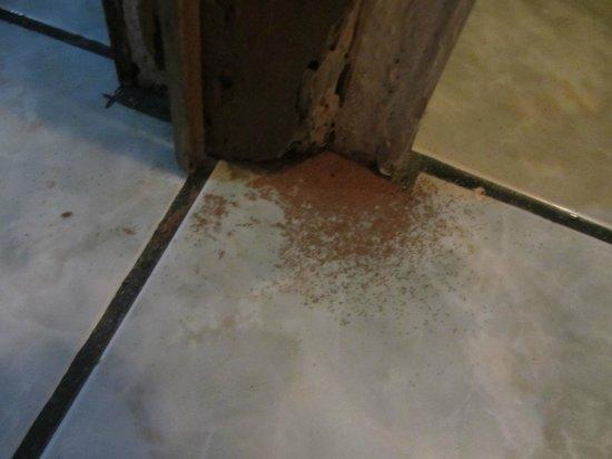 Hotel Ceciliano : Cada vez q se cerraba, la puerta se deshacia.Necesidad de cerrar puerta para evitar entrada inse