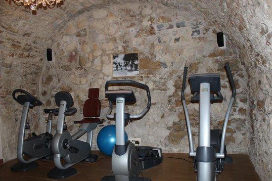 Alchymist Grand Hotel & Spa: Тренажерный зал