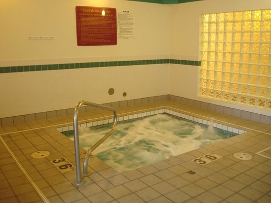 Howard Johnson Inn and Suites Vancouver by Vancouver Mall: Spa