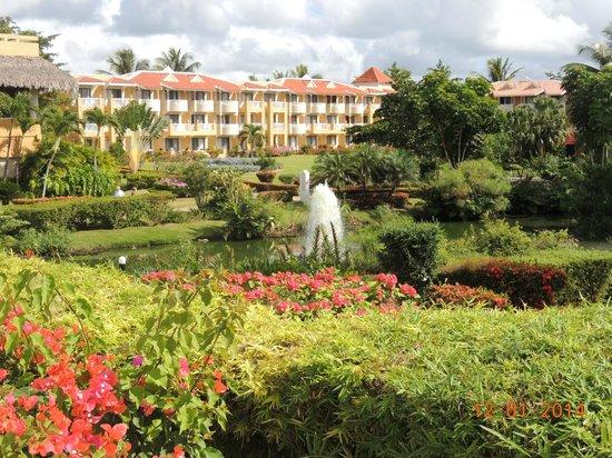 Viva Wyndham Dominicus Palace: El centro del hotel: Una reserva natural