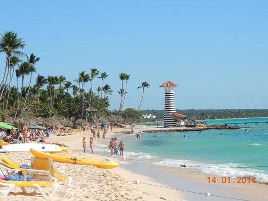 Viva Wyndham Dominicus Palace: La playa