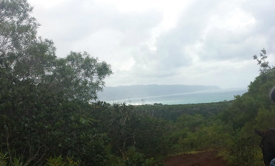 Happy Trails Hawaii: one of the gorgeous views