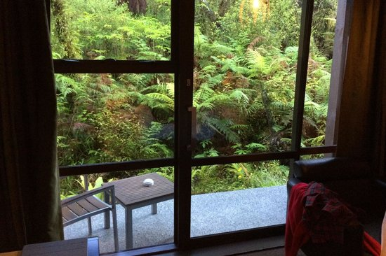 Te Waonui Forest Retreat: Our patio