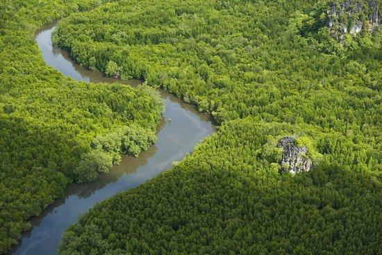 Four Seasons Resort Langkawi, Malaysia: Kilim Karst Geoforest Park
