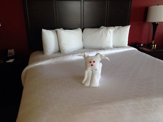 Pier House 60 Marina Hotel: King bed- housekeeping left a sweet towel animal